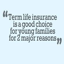 Term Life Quote Gorgeous Term Life Quote Excellent Quote Term Life Insurance New Quotes On