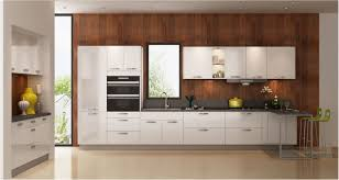 incredible impressive frameless vs framed kitchen cabinets furniture low cost kitchen cabinets euro style cabinet doors