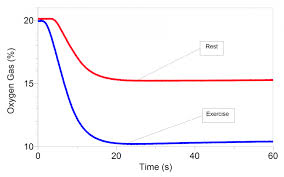 Oxygen Consumption Chart Tips For Measuring Oxygen Consumption And Vo2 Max Vernier