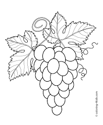 Grapes Coloring Pages Collection Free Coloring Books
