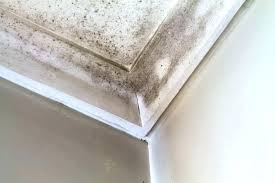 how to remove mildew from bathroom walls mildew bathroom caulk clean mould and small how to