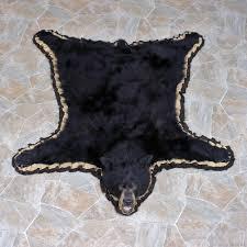 black bear taxidermy rug for 11161 for the taxidermy