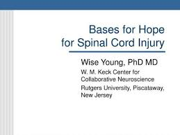 referat spinal cord injury documents