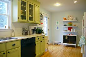 Cute Kitchen The Amazing Of Green Kitchen Cabinets New Home Designs