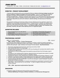 Executive Resume Template Word Magnificent Resume Layout Word Elegant Executive Resume Template Word Samples