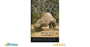 Komodo Dragons Biology And Conservation Zoo And Aquarium