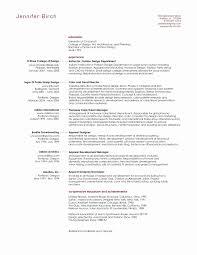 Basic Resume Format Examples Fresh Business Resume Format Fresh
