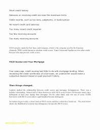 Payment History Letter Template 15 Late Payment Explanation Letter Sample Paystub