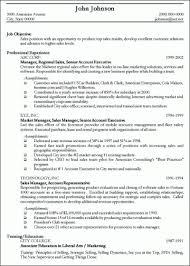 Professional Resume Writers Nyc Sample John Johnson Updated And