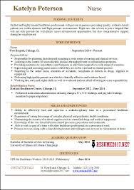 Nursing Resume Examples. Intensive Care Unit Registered Nurse ...