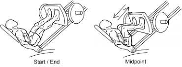 Image result for leg press form