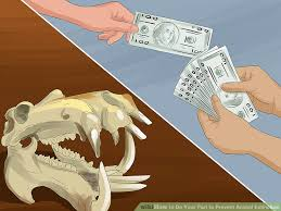 ways to do your part to prevent animal extinction wikihow image titled do your part to prevent animal extinction step 2