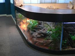 Image result for cost estimate for aquarium services