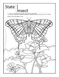 Small Picture Free Coloring Pages Insects