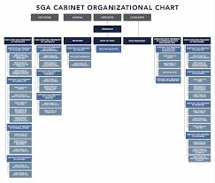 Organization Chart Student Government Association Auburn