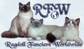 Small Picture Ragdoll Fanciers Worldwide Club For Ragdoll Cat Breeders and Lovers