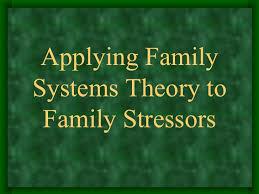 theory essay system theory essay
