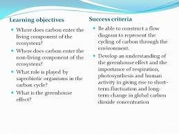Carbon Cycle Flow Chart 6 1 The Carbon Cycle Ppt Download