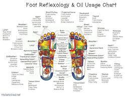 Foot Reflexology Oil Application Chart Essential Oil