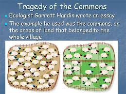 science and the environment ppt video online  24 tragedy of the commons ecologist garrett hardin wrote an essay