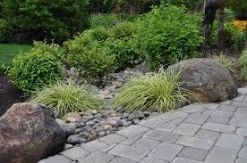 Small Picture rain garden plants seattle Margarite gardens
