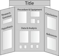 School Trifold Board Project Sample Tri Fold Science Pinterest