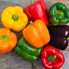 Image result for google images of bell pepper