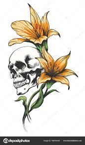 череп с орхидеи векторное изображение Bogadeva 189181040