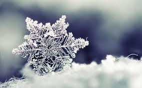snowflake wallpaper. Unique Wallpaper Snowflake Desktop Wallpaper Background 1680x1050 Widescreen 57482  To O