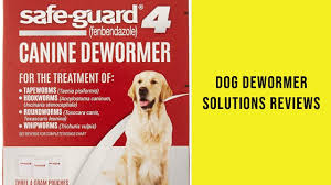 Dog Dewormer Solutions Reviews Dog Dewormer Solutions To