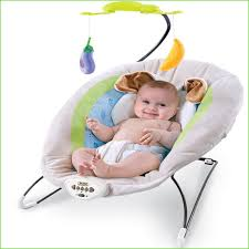 Vibrating Baby Chair Unique the Ultimate In Baby Swings Ingenuity ...