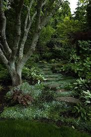 lovely woodland path from plantswoman design inc landscape design bainbridge island poulsbo bedroommagnificent lush landscaping ideas