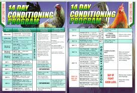14 Day Conditioning Program Excellence Poultry Livestock