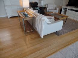 bamboo is the hardwood flooring solution you never knew you needed