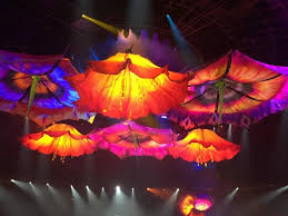 Get Seats In Row B Ill Explain Review Of Le Reve The
