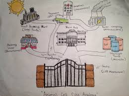 Cell City Analogy Examples Straightforward Advices Cell City Pictures 2019