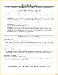 Sample Personal Action Plan Awesome Personal Health Plan Template Downloads Full Medium Personal Health