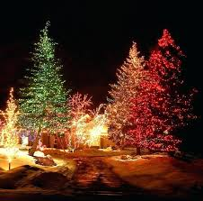 christmas tree lighting ideas. Outdoor Xmas Tree The Best Lighting Ideas That Will Leave You Breathless Christmas R