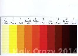 Bleaching Hair Color Level Chart Il Studio Com