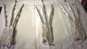 Risultati immagini per Mummie di Nazca