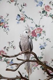 vintage bird wallpaper tumblr. Interesting Tumblr Vintage Bird Wallpaper Tumblr  Photo9 In Bird Wallpaper Tumblr