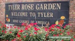 Image result for rose capital of america tyler