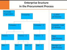 Sap Mm Organizational Structure In Sap Procurement Process