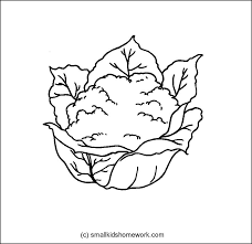 Small Picture Vegetables Outline Pictures and Coloring Pages for Kids