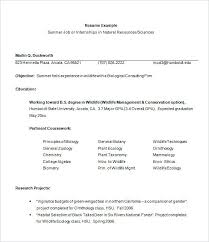 Typical Resume Format Inspiration Example Resume Format For Internship College Template Verbeco