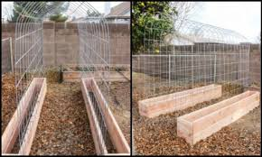 Small Picture 32 DIY Tomato Trellis Cage Ideas for Healthy Tomatoes