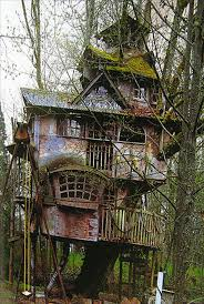 Captivating Tree House Plans For Kids Gallery - Best idea home .