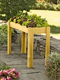 Kitchen Garden Planter Elevated Salad Bar Garden Cedar Salad Planter Raised Bed