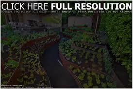 Small Picture Backyards Outstanding Backyard Vegetable Garden Plans Backyard