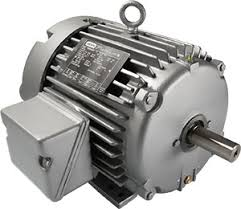 leeson ac motors general purpose 1 phase 3 phase farm duty leeson platinum e permanent magnet ac motors distributors